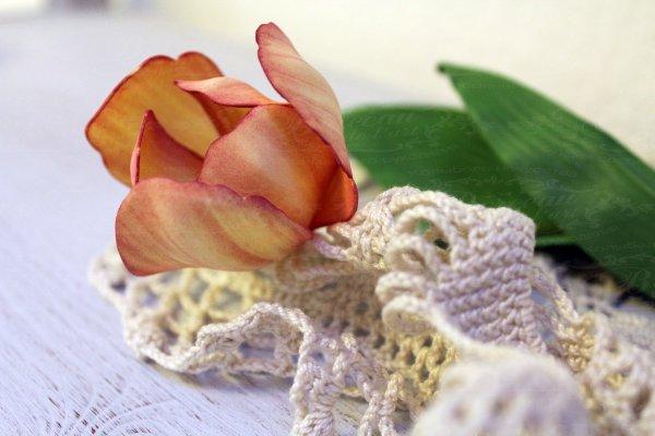 Тюльпан из фоамирана мастер-класс